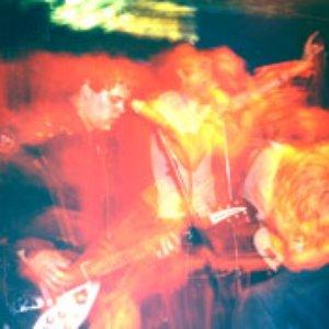 Image for 'Neon King Kong'