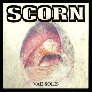 Image for 'Vae Solis'