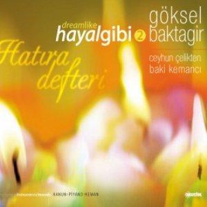 Image for 'Hayal Gibi 2'