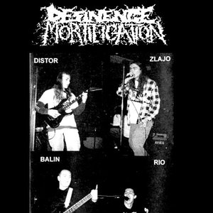 Image for 'DESINENCE MORTIFICATION'