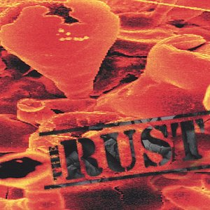 Image for 'The Rust'