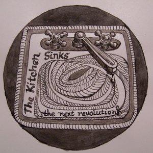 Bild för 'the next revolution'