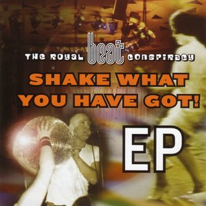 Image for 'Shake What You Have Got'