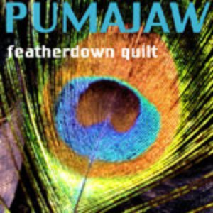 Image for 'Featherdown Quilt'