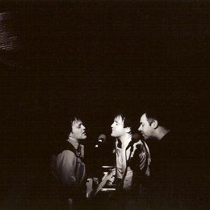 Imagem de 'The Wrens'