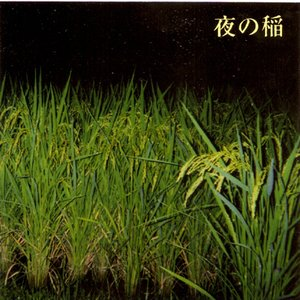 Image pour 'RIce Field Silently Riping In The Night'