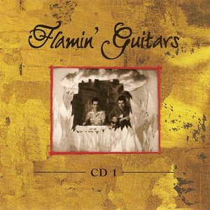 Image for 'Flamin' Guitars'