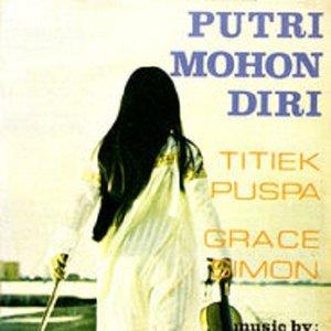Image for 'Putri Mohon Diri'
