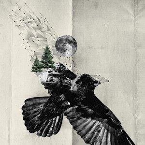 Image for 'Tvíeind'