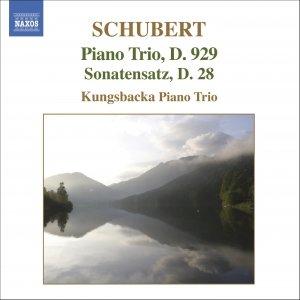 "Image for 'Piano Trio in B flat major, D. 28, ""Sonatensatz""'"