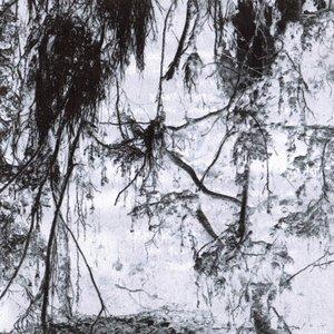 Image for 'N.t.K.'