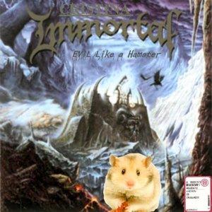 Image for 'Evil Like a Hamster'