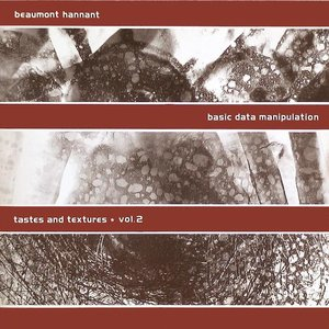 Image for 'Basic Data Manipulation: Tastes and Textures, Volume 2'