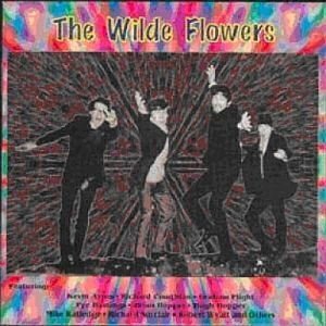 Image for 'The Wilde Flowers'