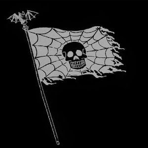 Image for 'Transylvanian Flag'