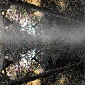 Image pour 'Revana (Embrace the Weak)'