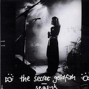 Image for 'The Secret Goldfish'