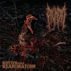 Bild für 'Rotten Body Reanimation'