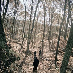 Bild för 'Wolf Ram Heart'