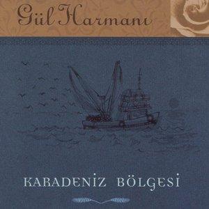 Image for 'Gul Harmani Karadeniz Bolgesi'