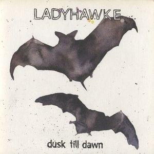 Image for 'Dusk Till Dawn (Live)'