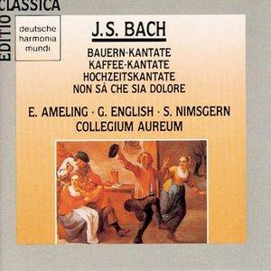 Image for 'Bach: Bauern-/Kaffeekantate'