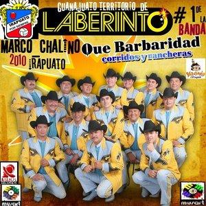 Bild för 'QUE BARBARIDAD_RANCHERAS Y CORRIDOS_2010_LABERINTO_MARCOCHALINO'