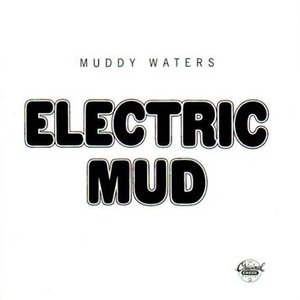 Image for 'Electric Mud'