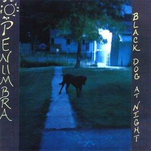 Bild für 'Black Dog At Night'