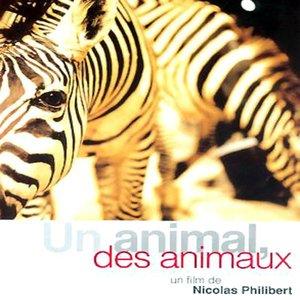 Image for 'Un animal des animaux (Bande originale du film de Nicolas Philibert)'