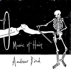 Bild för 'Music of Hair'