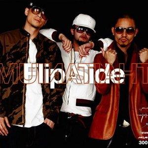 Bild für 'Flip Side'