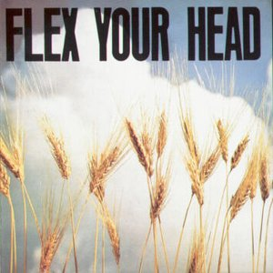 Image for 'Flex Your Head'