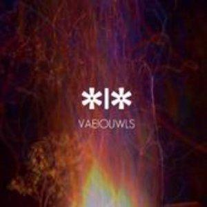 Image for 'vaeiouwls'