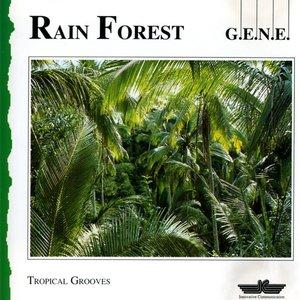 Bild für 'Rain Forest'