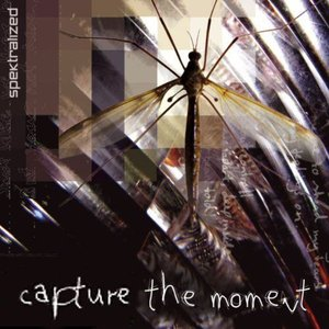Image for 'Capture the Moment'