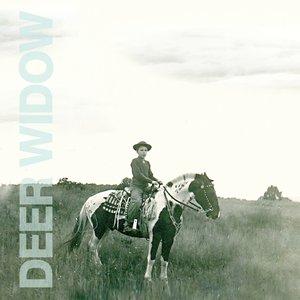 Image for 'Deer Widow'