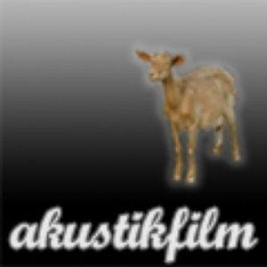 Bild för 'akustikfilm'