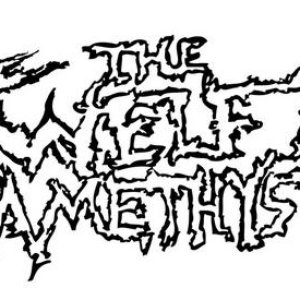 Image pour 'The Twelfth Amethyst'