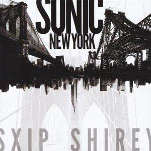Imagen de 'Sonic New York'