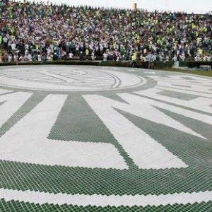Image for 'Palmeiras'