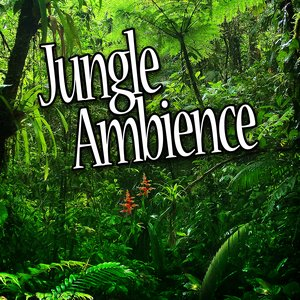 Image for 'Jungle Habitat for Deep Sleep and Relaxation (Nature Sound)'