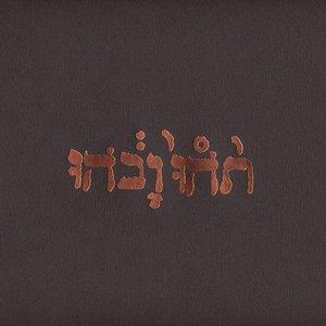 Image for '2003-03-04: 9:30 Club, Washington, DC, USA (disc 2)'