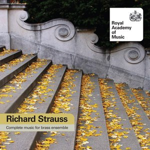 Image for 'Strauss, R.: Complete Music for Brass Ensemble'