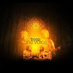 Image for 'One Voice'