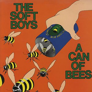 Image for 'A Can of Bees'
