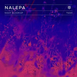 Image for 'Night Bloom EP'