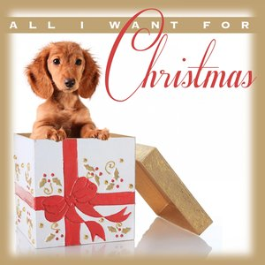 Image for 'All I Want for Christmas'