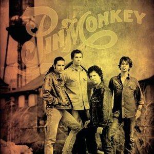 Image for 'Pinmonkey'