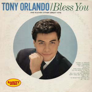 Image for 'Bless You & 11 Other Great Hits: Rarity Music Pop, Vol. 186'